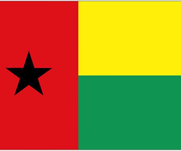 幾內亞比紹ECTN