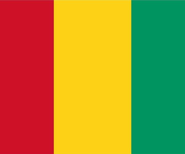 幾內亞ECTN