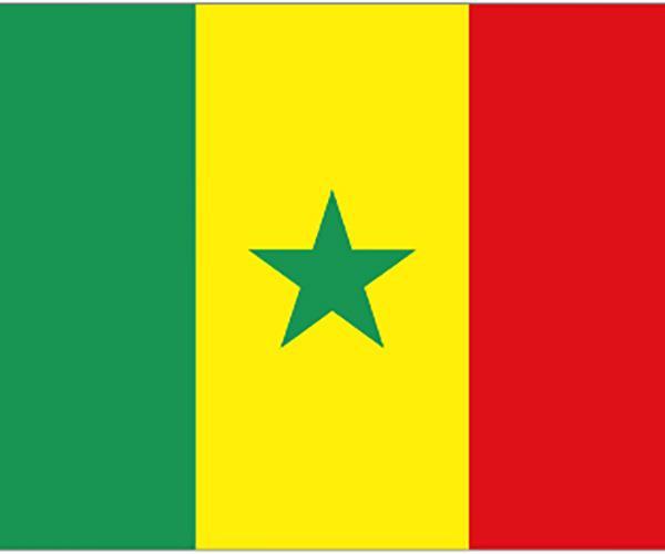 塞內加爾ECTN