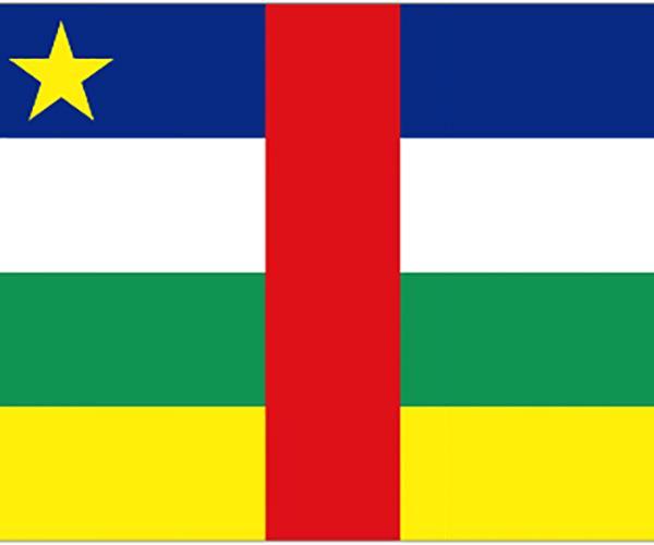 中非ECTN